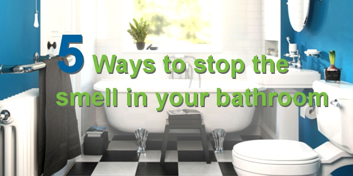 5 Easy Ways to Stop the Smell in Your Bathroom