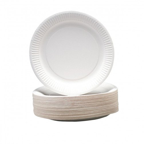 Paper Plates 9in Pk100